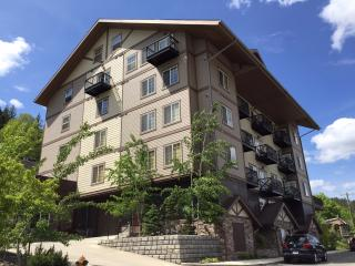 Alpine Village Luxury Condo, Kellogg