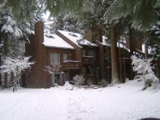 Snowater Condo #61 - A great mountain retreat!, Glacier