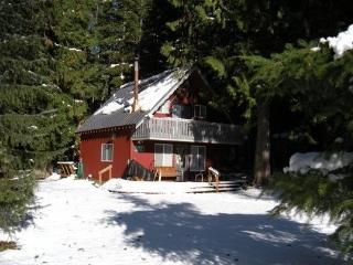 #63 Mt. Baker Rim Cabin is pet friendly + Wifi!, Glacier