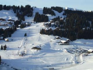 Ski in or ski out with spectacular views, Manigod