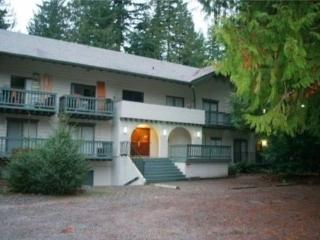 #72 Great little condo near skiing and hiking!, Glacier