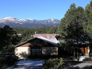 Christi and Don's Nuthouse is a great entertaining family getaway home., Ruidoso