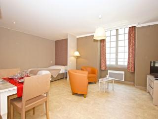 Gorgeous 1BR in the heart of Nantes
