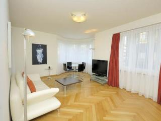 Recently Furnished and Spacious Apartment, Zurich