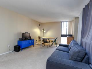Modern DT Apt with Balcony, Ottawa