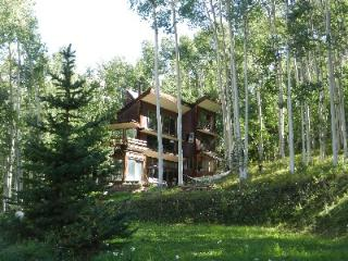 Secluded Ski Ranches Cabin (3 bedrooms, 3 bathrooms), Telluride
