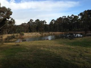 Forty Acres Farmstay, Newstead