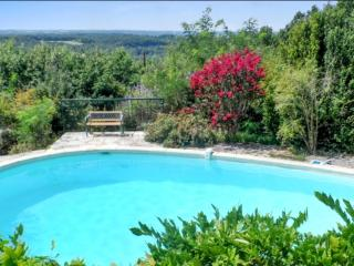 House with pool by idyllic village, Bruniquel