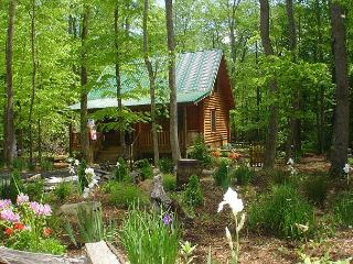 'CREEKSIDE SERENADE' Cabin w/Hot Tub, WiFi, Fenced Yard for pets, Game Table!, Todd