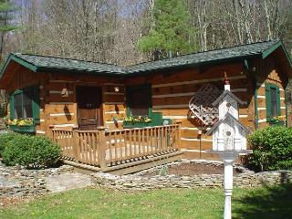 'CREEKSONG' Darling Cabin with Outdoor Fireplace, Bubbling Hot Tub & WiFi!, Fleetwood