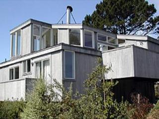 Sun filled house just steps from the beach, Stinson Beach
