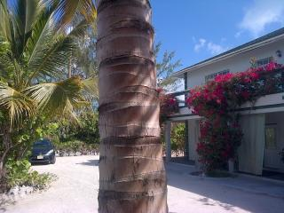 Silver Palm Beach House 1A, Turks & Caicos Hotel, Providenciales