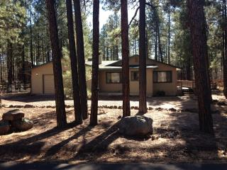 Awesome cabin getaway!, Pinetop-Lakeside