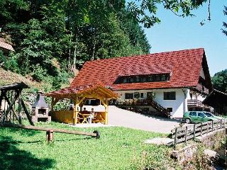 Vacation Apartment in Oberharmersbach - 2 bedrooms, max. 4 People (# 7644)