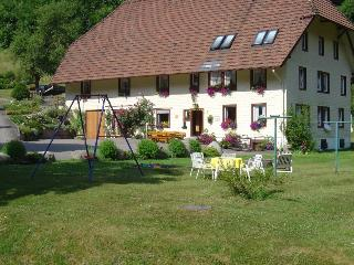Vacation Apartment in Triberg im Schwarzwald - max. 4 people (# 7996)