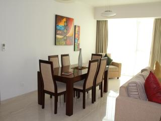 Luxury Apartment on The Emperor in Colombo