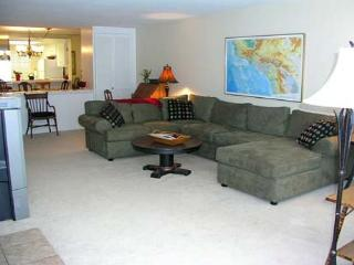 2 Bedroom, 2 Bathroom Vacation Rental in Solana Beach - (SONG9)
