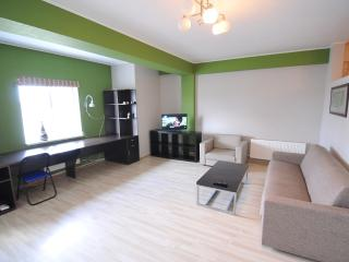 Spacious and comfortable apartment in a new block, Chisináu