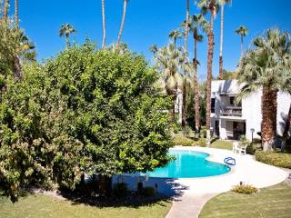Palm Canyon Villa, Palm Springs