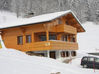 16p luxury chalet opposite skislope in Chatel (Fr)