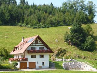 Vacation Apartment in Kappelrodeck - 861 sqft, 80sqm, 2 bedrooms (# 7696)