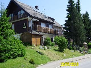 Vacation Apartment in Schönwald - 2 bedrooms, max. 4 People (# 7792), Triberg