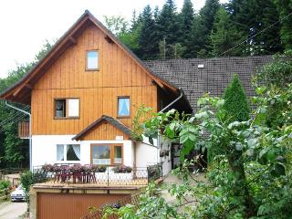 Vacation Apartment in Ottenhoefen im Schwarzwald - 2 bedrooms max. 6 persons (# 8404), Sulzbach