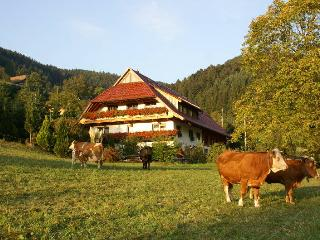 Vacation Apartment in Zell am Harmersbach -  (# 8410)