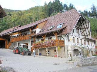 Vacation Apartment in Lautenbach - 700 sqft, 1 living / bedroom, max. 4 people (# 8416)