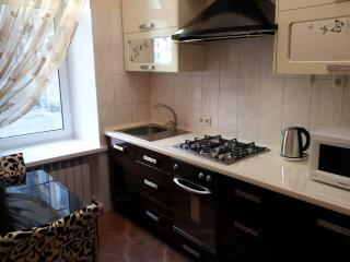 Stylish, clean, comfortable apartment in Odessa
