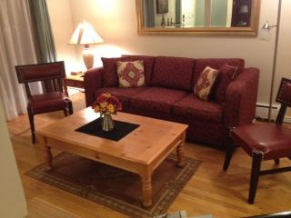 Fully Furnished / All inclusive Downtown Condo, Boulder