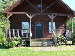 'BEARS DEN' Perfect For A Family Retreat- Holidays Are Available!, Glendale Springs