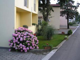 Apartments Dragica, Njivice