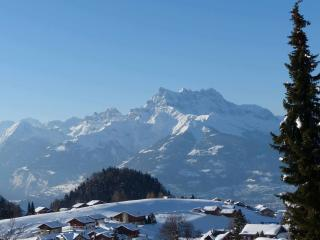 Leysin 1 Bed appartment