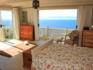 The Flying Penguin - Penthouse, Simon's Town