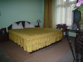 Holiday apartment in Sinaia,near the Peles Castle