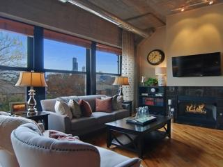 ENTIRE LUXURY LOFT - COME AND RELAX, Chicago