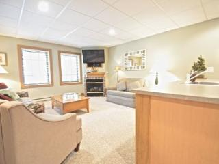 Cozy One Bedroom With an Up North Feel - Walking Distance To Village of Boyne, Boyne City