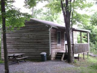 Cabin rentals in the woods near Raystown Lake, Huntingdon