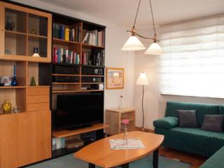 Vacation Apartment in Dresden - quiet, central, comfortable (# 8803)