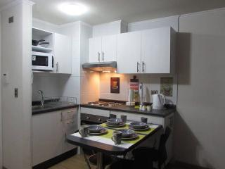 Nice apartment comfortable and cozy !!, Santiago