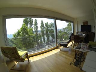 Modern Studio with Bosphorus View, Istanbul