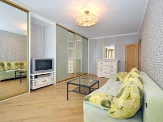 №67 Apartments in Moscow