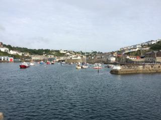 Toshiers Plaice, Mevagissey