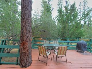 Spruce Hollow! Hot Tub! Mtn Views! BBQ! Internet!, Big Bear Lake