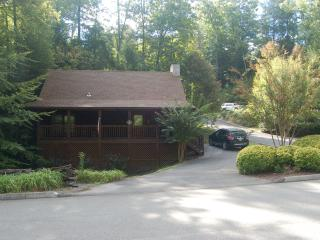 Papawsplace  3/4 mile off Parkway, Pigeon Forge