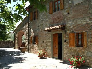 Very nice house with olive grove in Tuscany, Florença