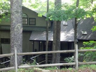 Spacious Mountain Home, Game Room with 4 Bedrooms, Beech Mountain