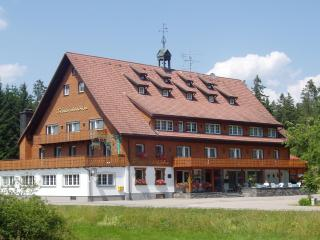 Vacation Apartment in Vöhrenbach -  (# 7564)