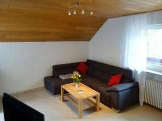 Vacation Apartment in Buehlertal - 2 bedrooms, max 5 people (# 8619)